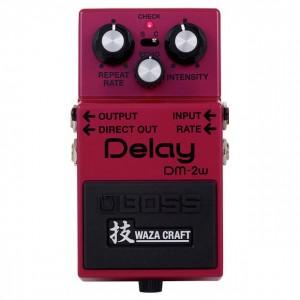 DM-2W Delay